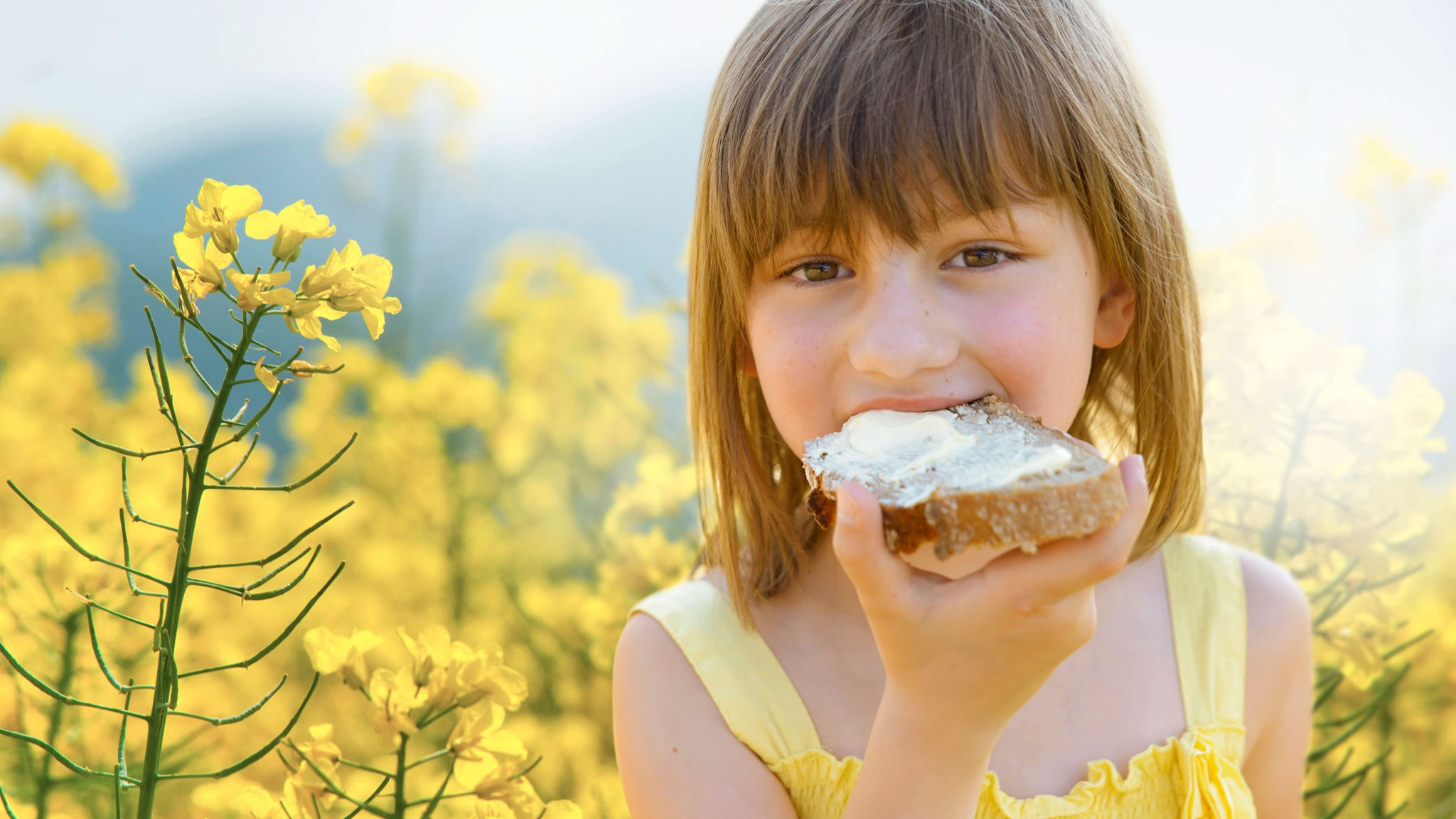Palsgaard Will Help You Produce Non Palm Margarine With Success