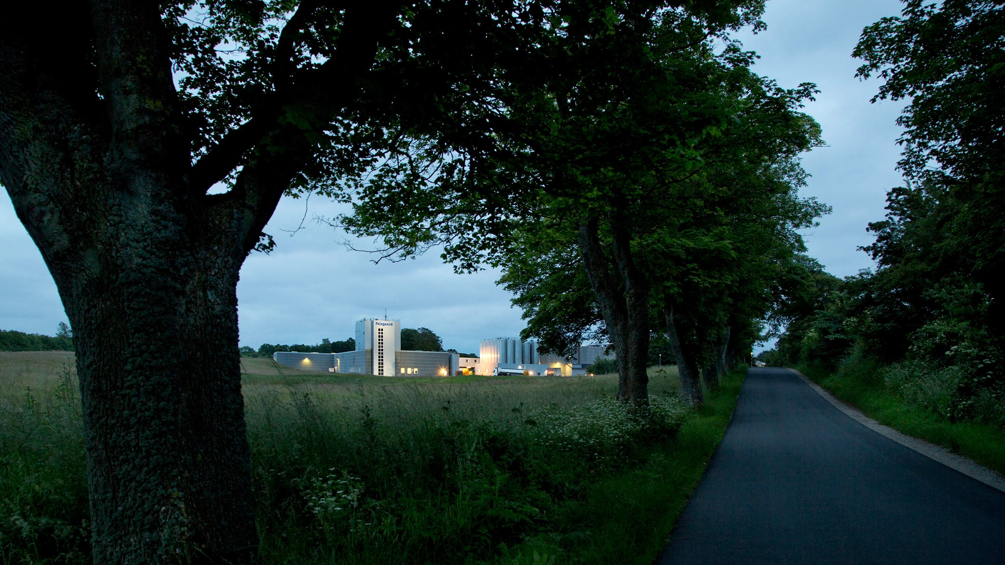 Palsgaard Denmark Emulsifier Factory