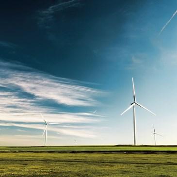 Palsgaard通过切换到可再生能源来实现碳中立性