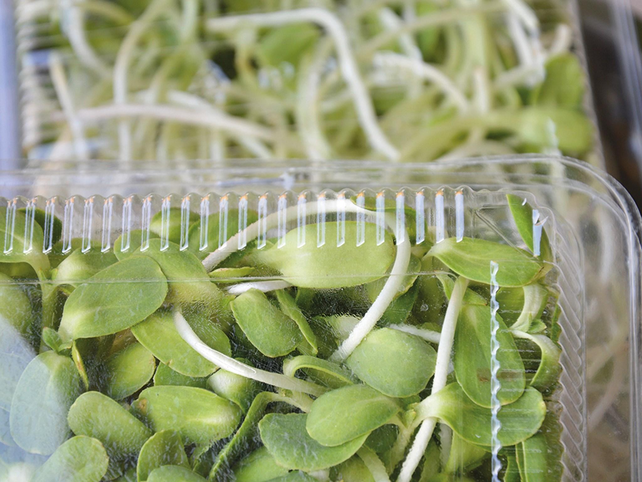 Einar anti-fog coating additives are bio-based and food-grade